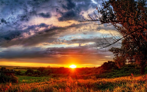 Papéis de Parede Pôr do sol, sol, natureza, árvores, nuvens