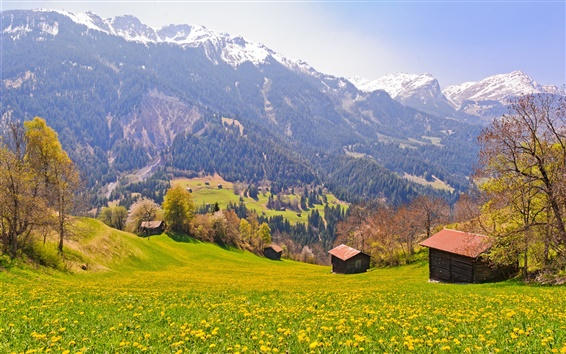 Wallpaper Switzerland, fields, trees, mountains, slopes, village