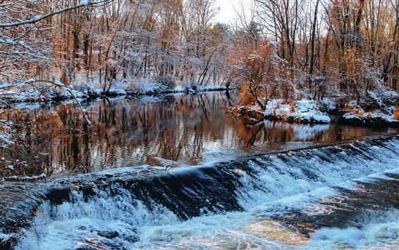 Обои Зима, лес, деревья, река, потоки