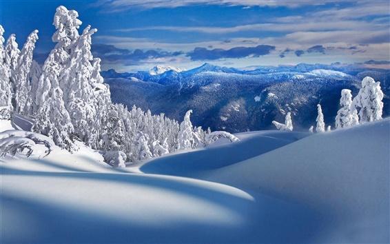 Papéis de Parede Inverno, montanhas, neve, frio, árvores, natureza