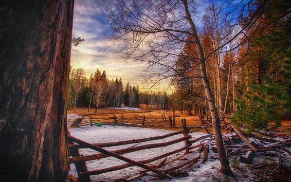 Fondos de pantalla Invierno, árboles, cerca de madera, por la noche