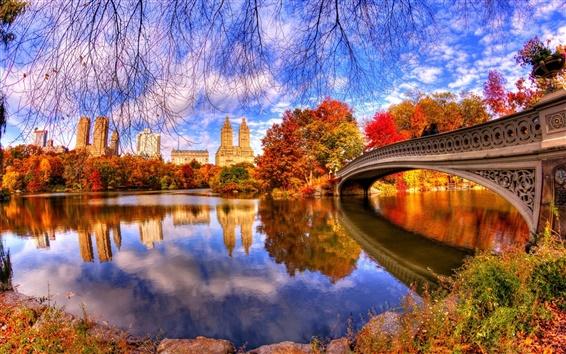 Wallpaper Autumn, nature, park, trees, water, bridge, reflection, Central Park