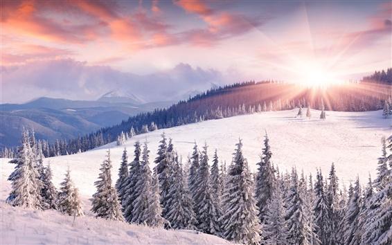 Обои Рассвет, зима, снег, солнце, горы, деревья
