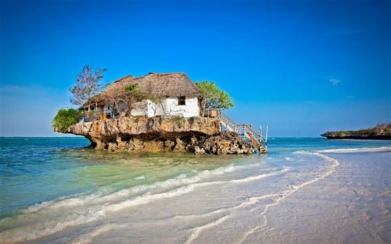 Papéis de Parede Início na ilha, escadas, mar, árvores