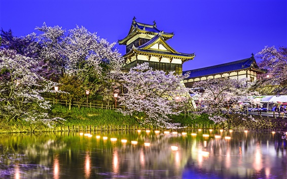 Wallpaper Koriyama Castle, Yamatokoriyama, Japan, pond, trees, cherry, night