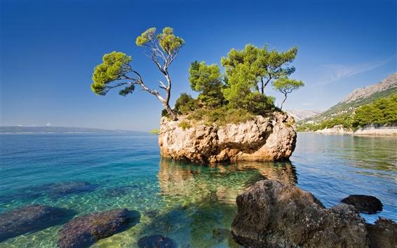 Fond d'écran Nature, mer, roche, arbres, île déserte