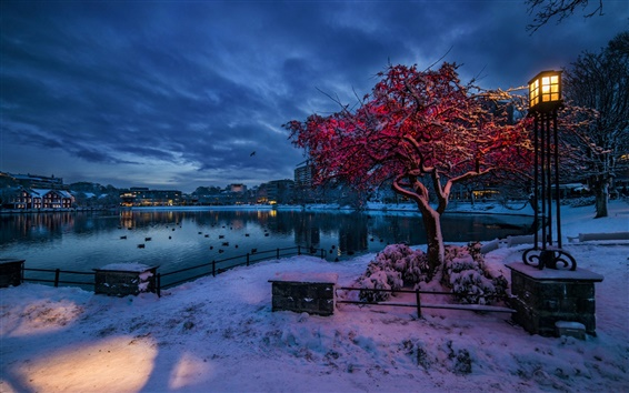 Papéis de Parede Noruega, Rogaland, Stavanger, inverno, neve, noite, luzes, cidade, casas