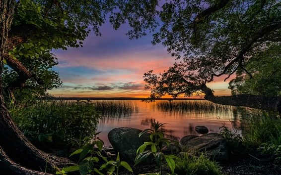 Wallpaper Paradise landscape, trees, lake, dusk