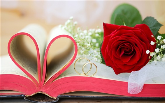 Wallpaper Red flowers, roses, Valentine's Day, book, love hearts, rings