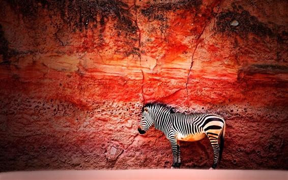 Wallpaper Red wall, zebra