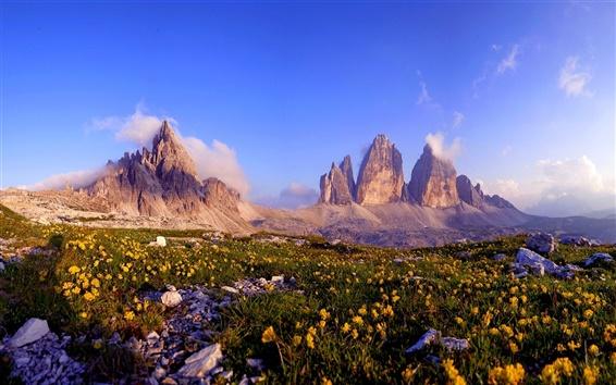 Обои Остроконечные скалы, цветы, камни, горы, синее небо