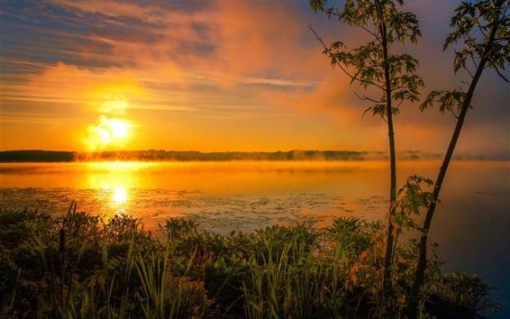 壁紙 夏、湖、朝、霧、太陽、日の出、雲