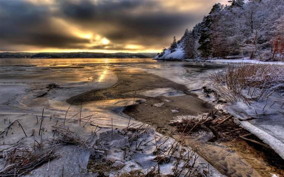 Обои Швеция, вода, лед, снег, деревья, зима, сумерки
