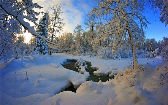 Wallpaper Thick snow winter, trees, river, dusk