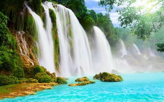 Обои Водопады, вода, деревья
