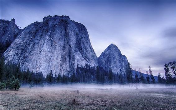 Fondos de pantalla Parque Nacional de Yosemite, EE.UU., árboles, montañas, niebla, mañana