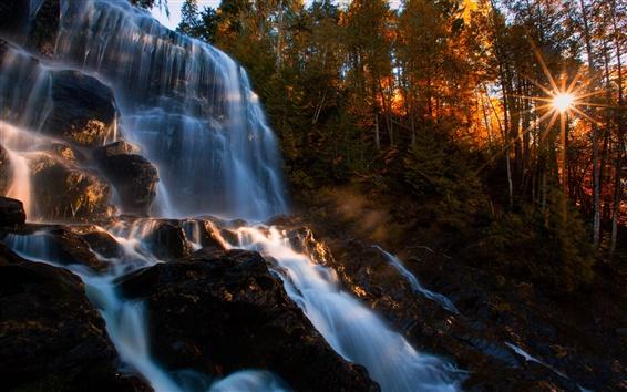 Fond d'écran Automne, forêt, cascades, rochers, arbres, soleil