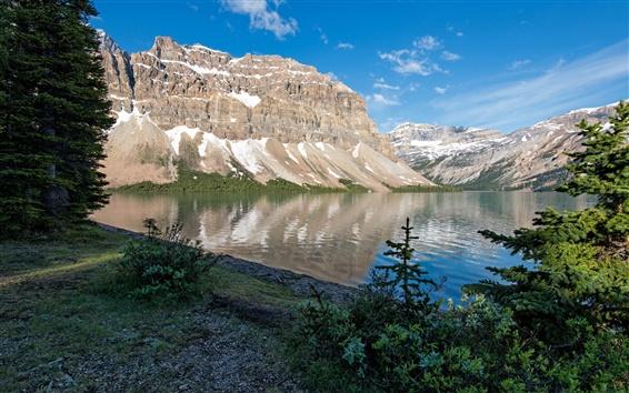 Обои Банф Парк, Канада, горы, скалы, озеро, деревья