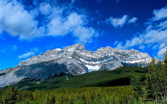 Fond d'écran Cascade Mountain, le parc national Banff, Alberta, Canada, forêt