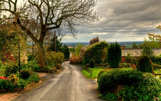 Wallpaper England, Horwich town, road, trees, houses