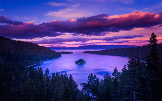 Wallpaper Forest, lake, island, trees, dawn