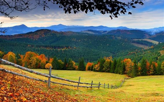 Обои Лес, деревья, горы, трава, листья, забор, осень