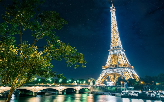Wallpaper Paris, The Eiffel Tower, city, night, lights
