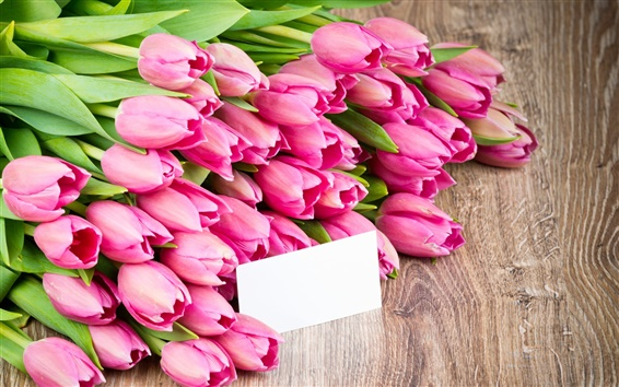 Wallpaper Pink flowers, tulips, bouquet