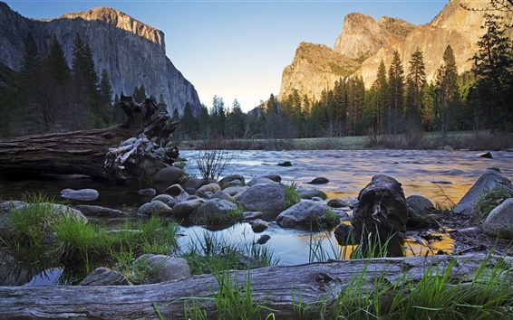 Fondos de pantalla Río, montaña, verano, rocas, árboles