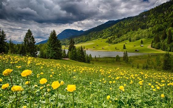 Обои Небо, облака, цветы, трава, горы, озеро