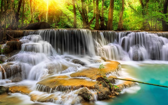 Wallpaper Thailand, forest, trees, waterfalls, stream
