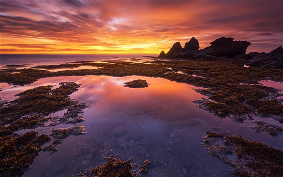 Wallpaper Bali, Indonesia, coast, sunset, red sky