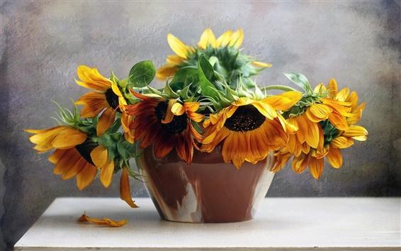 Обои Букет цветов, подсолнечник, натюрморт
