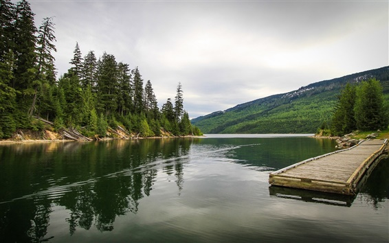Обои Канада, река, лес, мост, причал, пирс