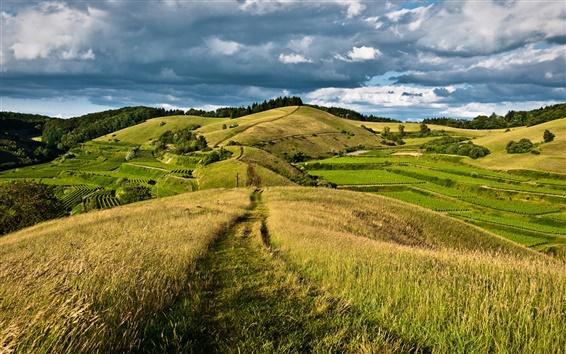 Обои Сельская местность, небо, облака, холмы, лес, дорога, луг, трава, поля