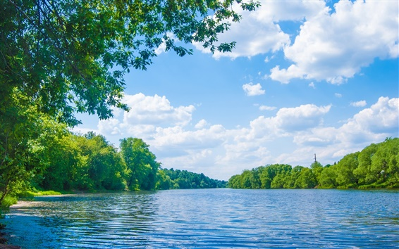 Wallpaper England, River Lune, trees, blue sky, clouds