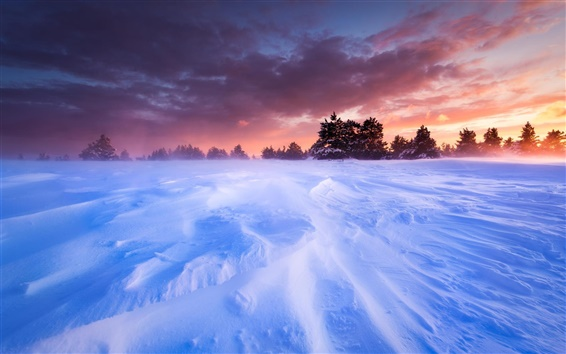 Wallpaper France, Provence, plains, snow, winter, trees, sunset