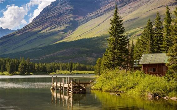 Обои Поход на озеро, Национальный парк Глейшер, Монтана, США, горы, деревья
