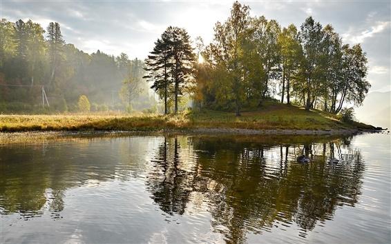 Обои Озеро, остров, деревья, туман, утро, природа пейзаж