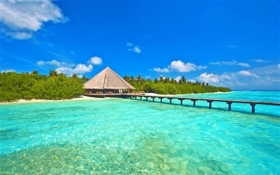 Wallpaper Maldives, sky, sea, ocean, island, palm trees, bungalows, bridge, pier