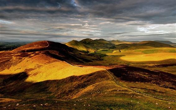 Wallpaper Nature, hills, England, Britain, sky, sheep