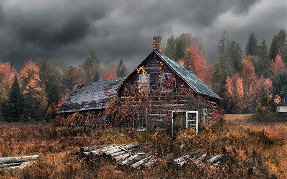 Wallpaper Old house, autumn, forest