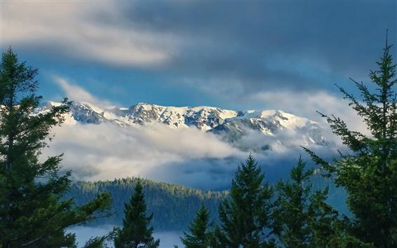 Papéis de Parede Olympic National Park, Washington, Olympic Ridge, nuvens, montanha