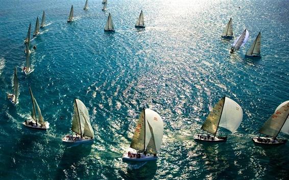 Wallpaper Sea, yachts, sail, blue, sunlight