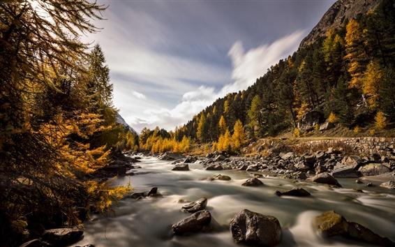 Wallpaper Switzerland, Val Roseg, autumn, river, trees, rocks