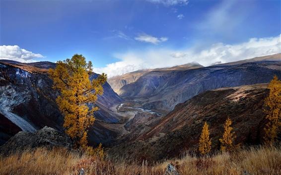 Wallpaper The Altai mountains, autumn, China