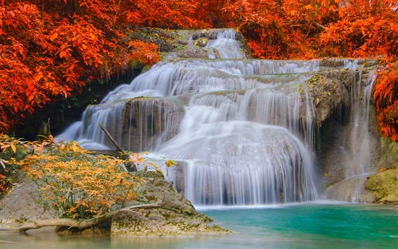 Wallpaper Waterfalls, autumn, trees, red leaves