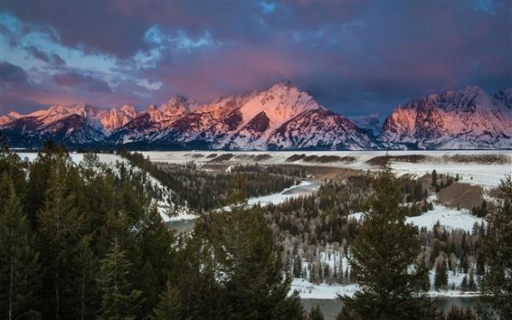 Обои Зима, лес, ели, река, горы, закат