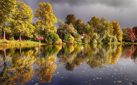 Papéis de Parede Outono, árvores, lagoa, lago, patos
