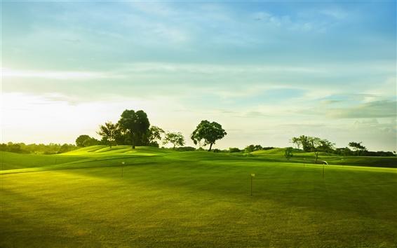 Papéis de Parede Campo de golfe, grama verde, árvores
